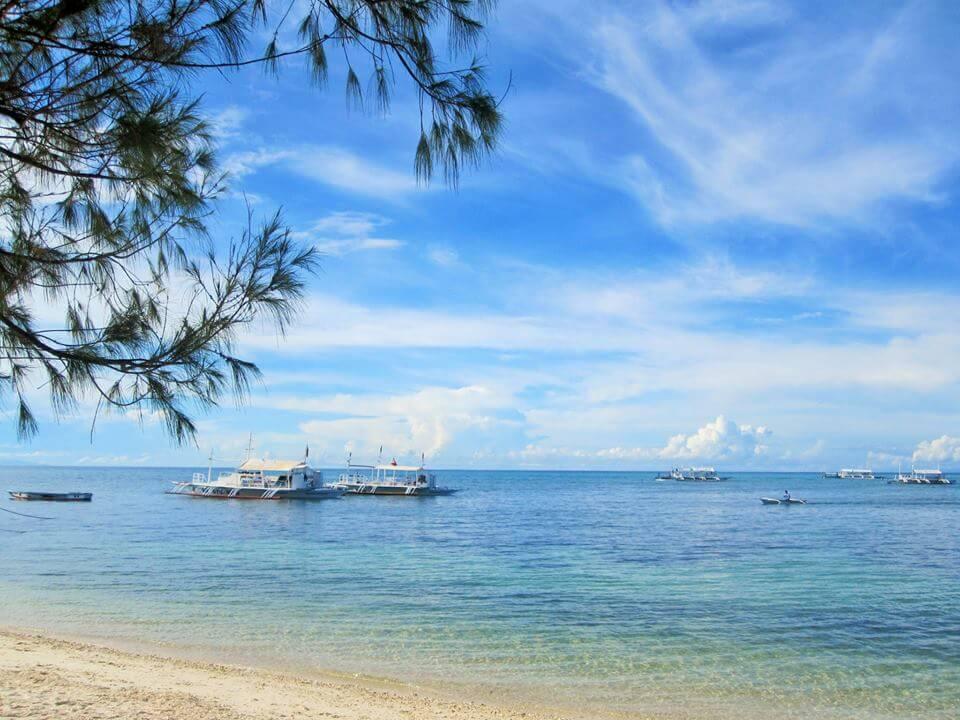 菲律宾游学经验谈